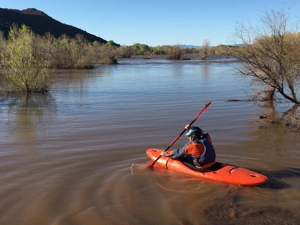 Arizona boasts the world record redear sunfish for Lake havasu fishing