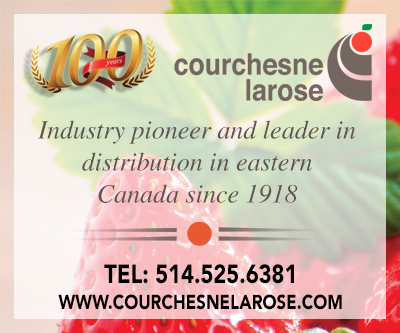 Courchesne Larose