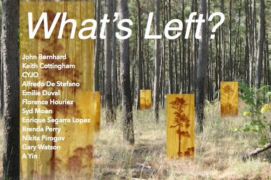 """What's Left?"" banner"