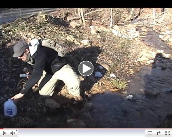 New River Field Report Feb 24 2013
