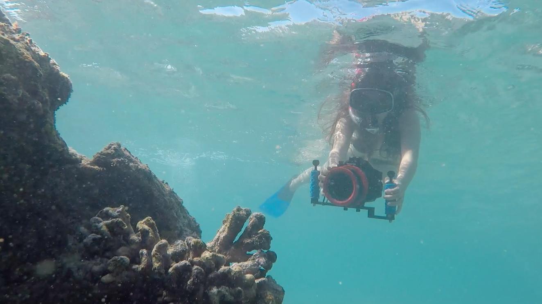 Malina_filming_unhealthy_coral.png