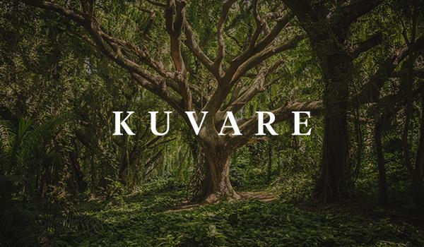 https://d2zhgehghqjuwb.cloudfront.net/accounts/7907/original/kuvare_tree.jpg