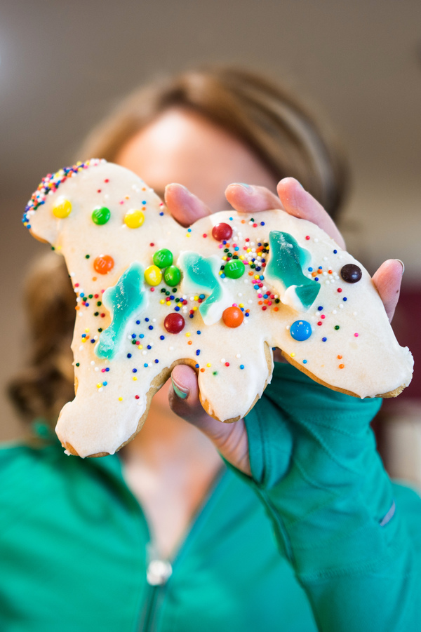 A Decorated Sugar Cookie