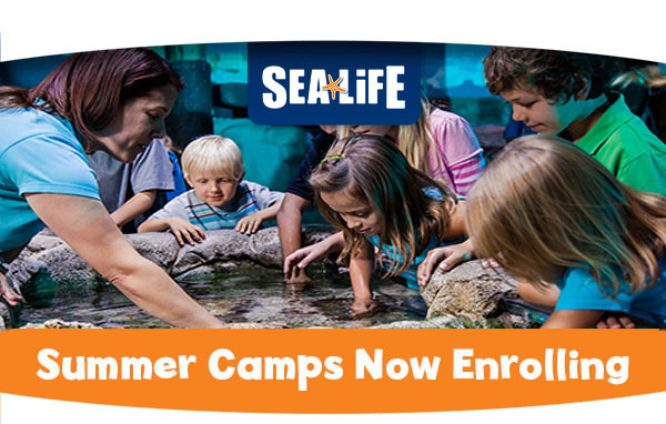 Sign Up Now for a SeaLife Kansas City Summer Camp!